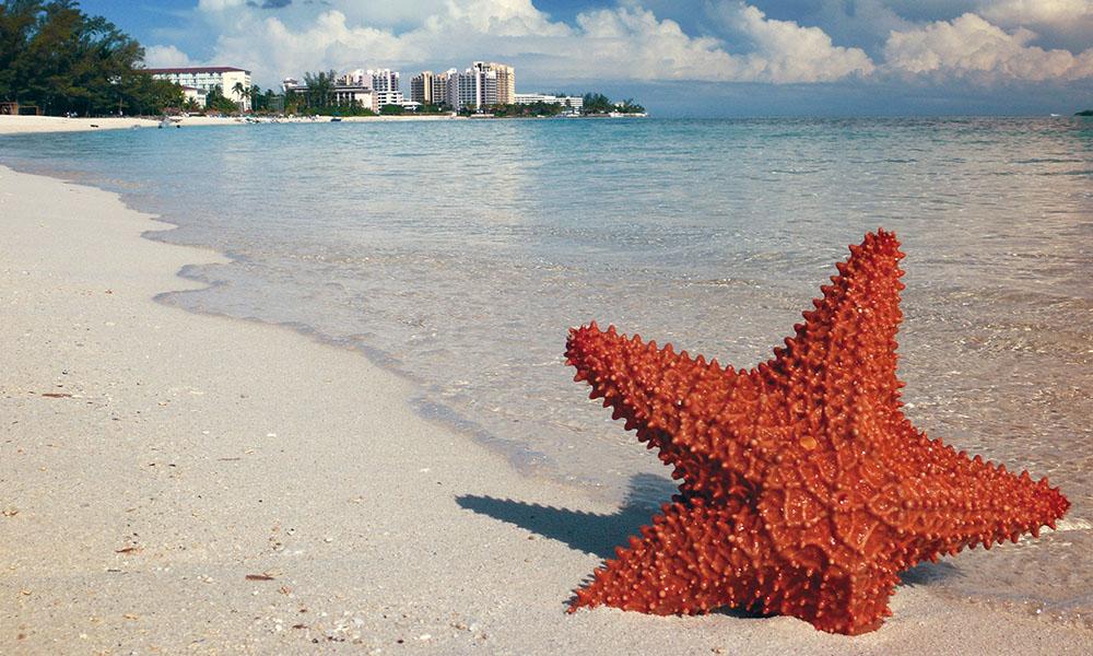 Qué Visitar En Nassau Capital De La Paradisíaca Bahamas Ciudades Con Encanto