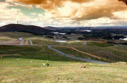 cosas que hacer en Canberra
