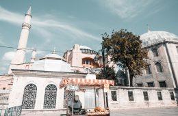 delicias gastronómicas de Estambul
