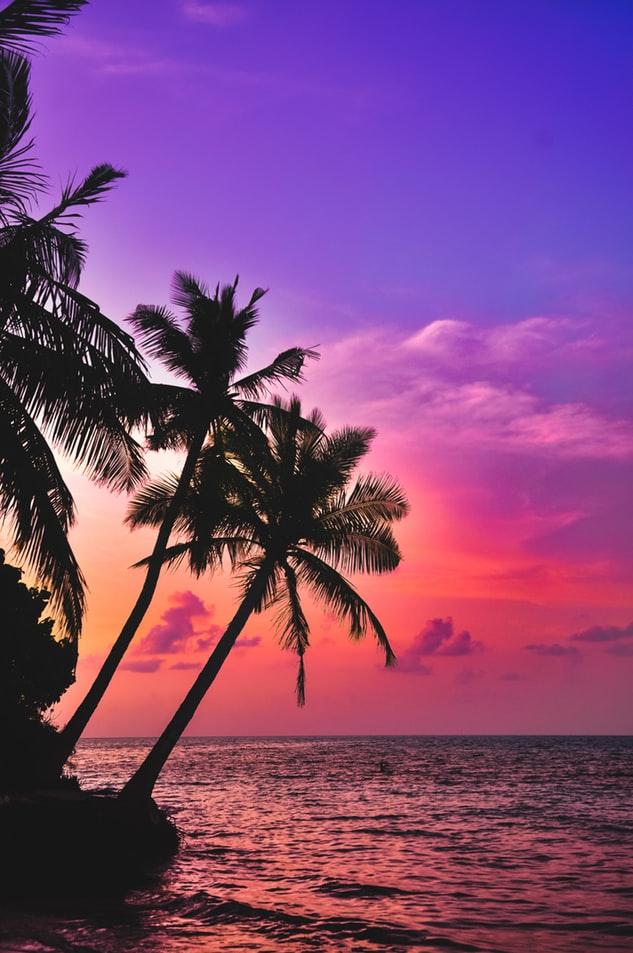 Sitios más lindos para visitar en enero 2020