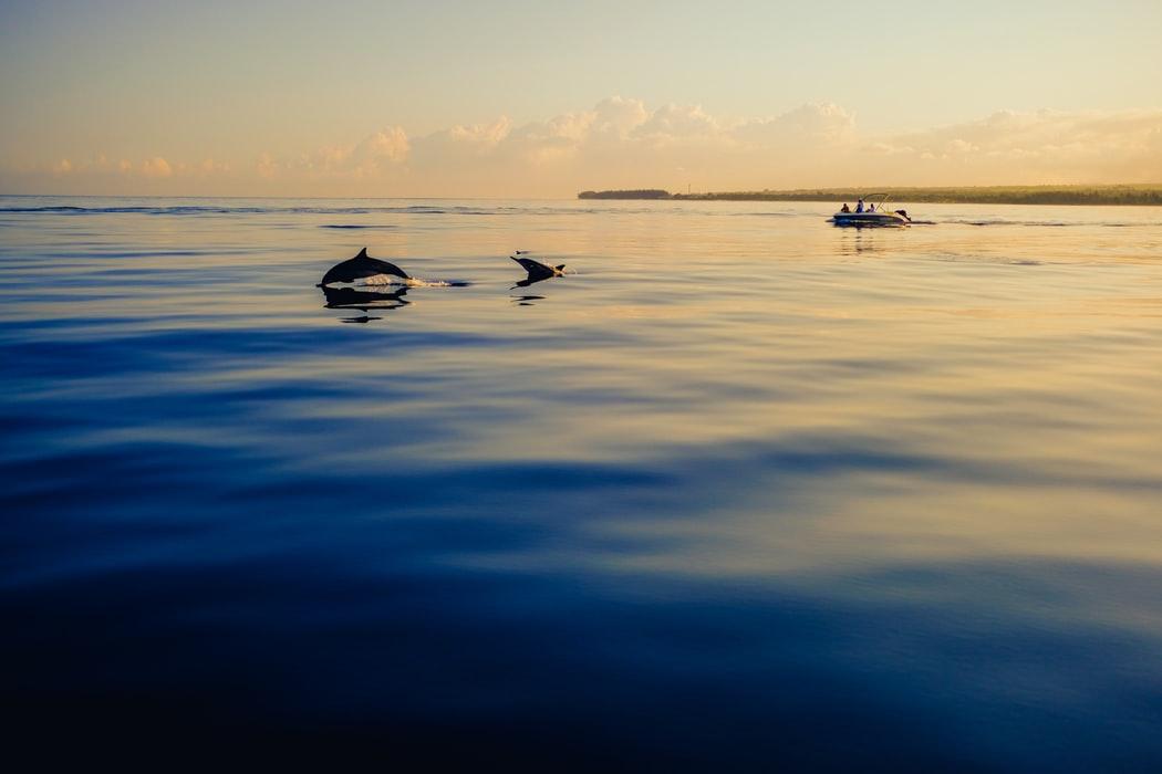 Los lugares más bellos de Mauricio