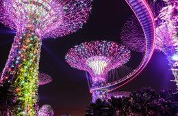 lugares más románticos de Singapurpara luna de miel