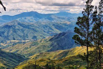 biodiversidad de América del Sur