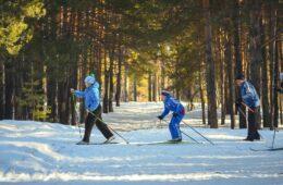 cómo planificar un viaje de esquí con niños