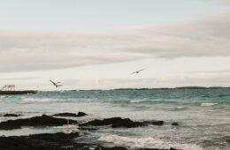 Vacaciones a Islas Galápagos en familia