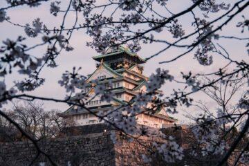 artículos esenciales al viajar a Japón